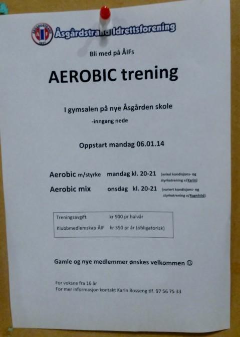 AEROBIC_trening